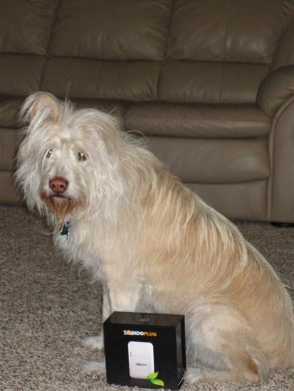 Even our friend's dog uses the TonidoPlug!